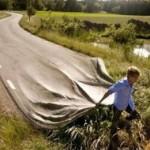 Compartiendo vida… Preparando el camino
